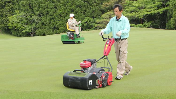 グリーンの芝生を傷めないゴルフマナー マイ