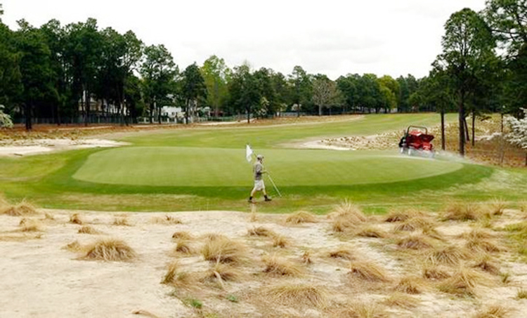 golfdash waste area or bunker at Pinehurst No.2?
