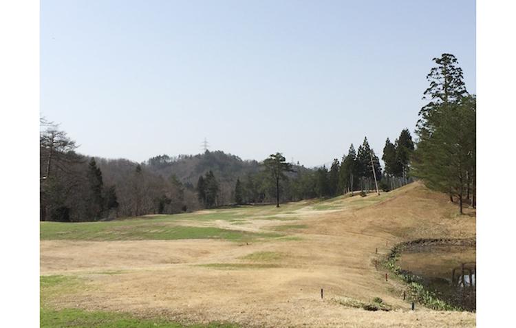 アイビスゴルフクラブ |趣味是徒然日記